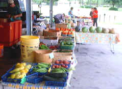 Kissimmee Valley Farmers Market